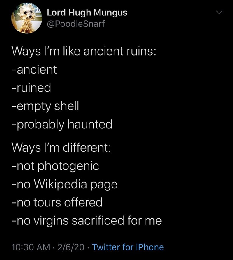 Text - Lord Hugh Mungus @PoodleSnarf Ways I'm like ancient ruins: -ancient -ruined -empty shell -probably haunted Ways I'm different: -not photogenic -no Wikipedia page -no tours offered -no virgins sacrificed for me 10:30 AM · 2/6/20 · Twitter for iPhone
