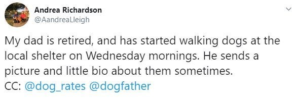 Text - Andrea Richardson @AandrealLleigh My dad is retired, and has started walking dogs at the local shelter on Wednesday mornings. He sends a picture and little bio about them sometimes. CC: @dog_rates @dogfather