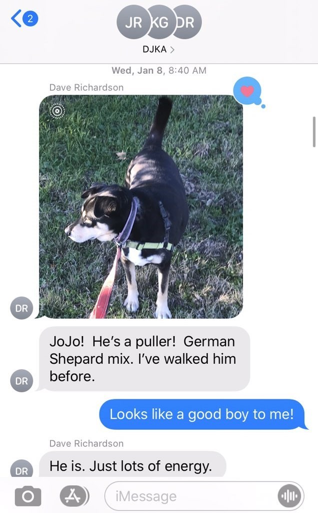 Canidae - JR KG DR DJKA > Wed, Jan 8, 8:40 AM Dave Richardson DR JoJo! He's a puller! German Shepard mix. I've walked him before. DR Looks like a good boy to me! Dave Richardson He is. Just lots of energy. DR iMessage
