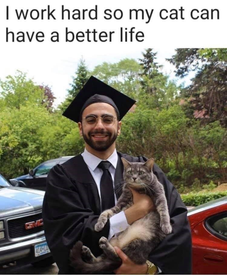 Graduation - I work hard so my cat can have a better life SMC 414CLD