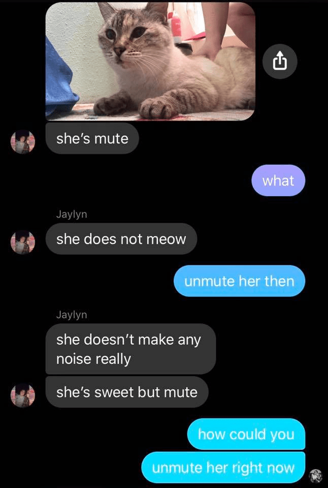 text conversation she's mute what she does not meow unmute her then she doesn't make any noise really she's sweet but mute how could you unmute her right now