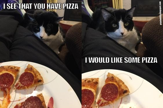 Food - I SEE THAT YOU HAVE PIZZA I WOULD LIKE SOME PIZZA psychokitty blegspot.com