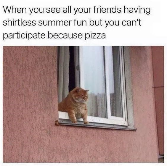 Cat - When you see all your friends having shirtless summer fun but you can't participate because pizza