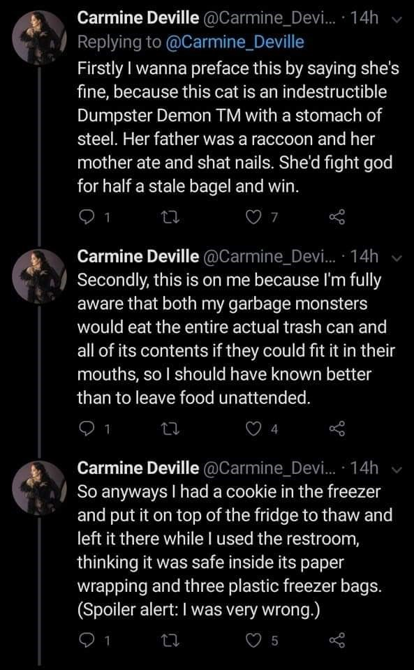 Text - Carmine Deville @Carmine_Devi. · 14h Replying to @Carmine_Deville Firstly I wanna preface this by saying she's fine, because this cat is an indestructible Dumpster Demon TM with a stomach of steel. Her father was a raccoon and her mother ate and shat nails. She'd fight god for half a stale bagel and win. 1 Carmine Deville @Carmine_Devi. · 14h Secondly, this is on me because I'm fully aware that both my garbage monsters would eat the entire actual trash can and all of its contents if they