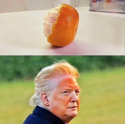 Trump compared to an orange for his spray tan