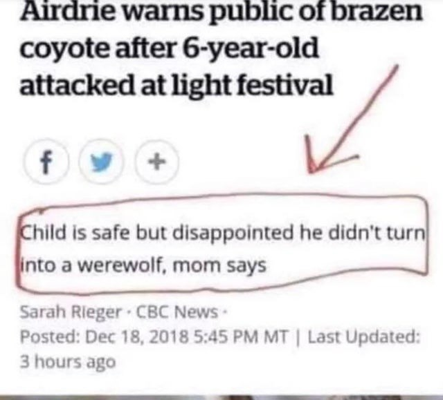 Text - Text - Airdrie warns public of brazen coyote after 6-year-old attacked at light festival Child is safe but disappointed he didn't turn into a werewolf, mom says Sarah Rieger · CBC News Posted: Dec 18, 2018 5:45 PM MT | Last Updated: 3 hours ago