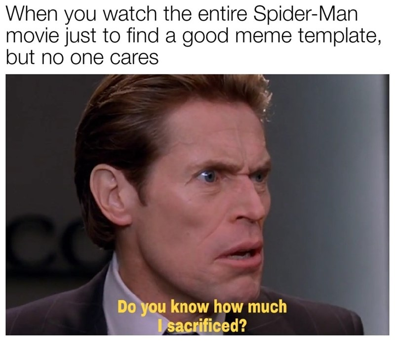 Face - When you watch the entire Spider-Man movie just to find a good meme template, but no one cares Do you know how much I sacrificed?