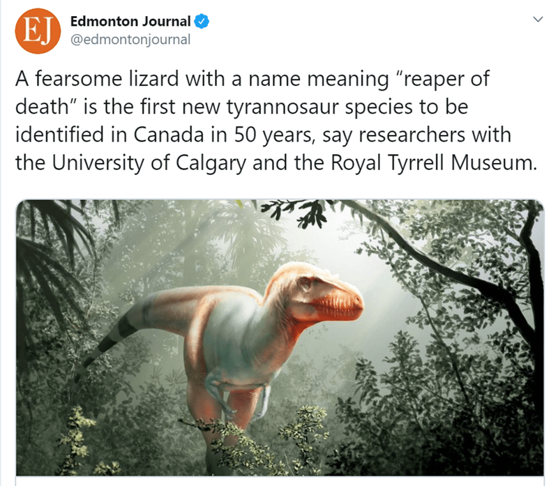 "Dinosaur - EJ Edmonton Journal @edmontonjournal A fearsome lizard with a name meaning ""reaper of death"" is the first new tyrannosaur species to be identified in Canada in 50 years, say researchers with the University of Calgary and the Royal Tyrrell Museum."