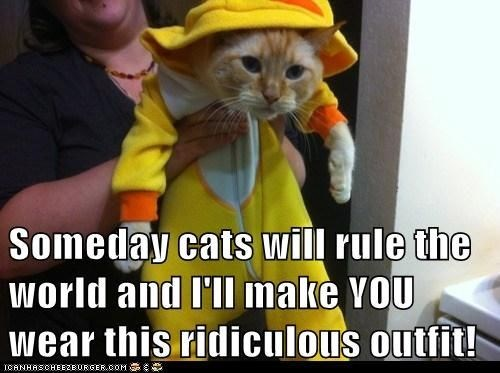 Photo caption - Someday cats will rule the world and l'l make YOU wear this ridiculous outfit! ICANHASCHEEZBURGER.COM S