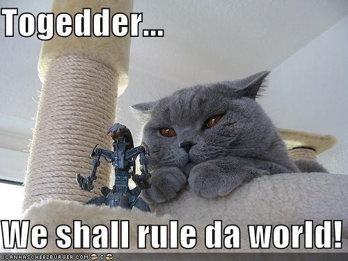 Cat - Togedder. We shall rule da world! ICANHASCHEEZE URGER.COM E