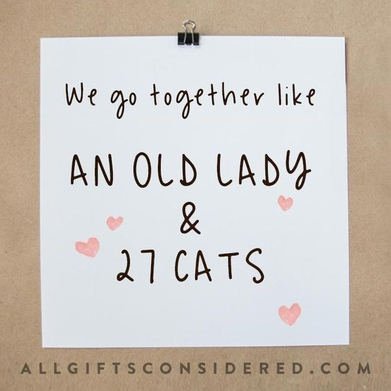 Text - We go together like AN OLD LADY 27 CATS ALLGIFTSCONSIDERED. COM