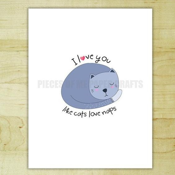 Text - love you PIECESEUPRAFTS ike cats love naps