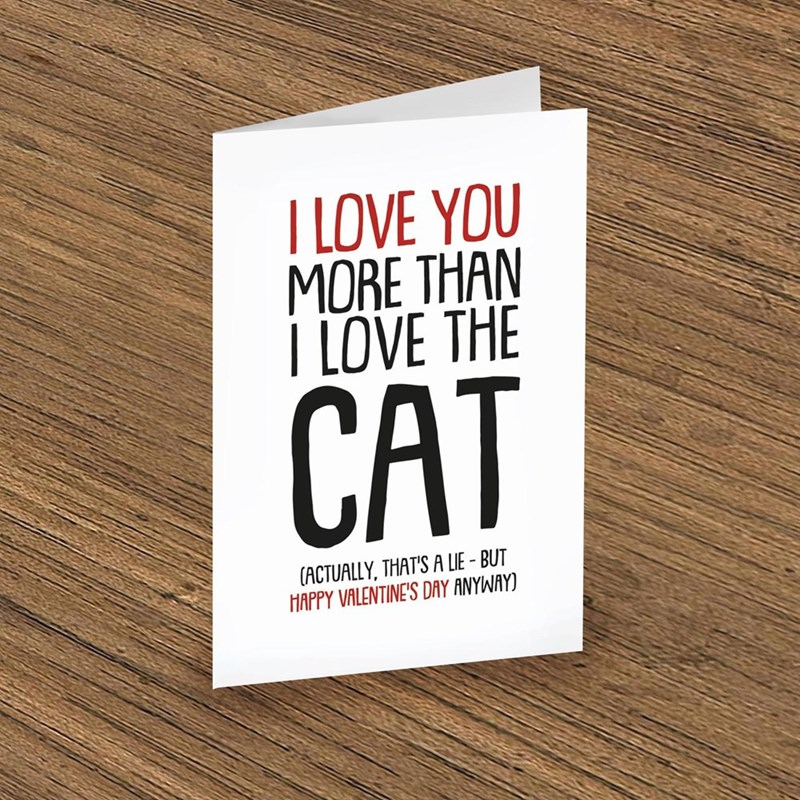 Font - I LOVE YOU MORE THAN I LOVE THE CAT (ACTUALLY, THAT'S A LIE - BUT HAPPY VALENTINE'S DAY ANYWAY)