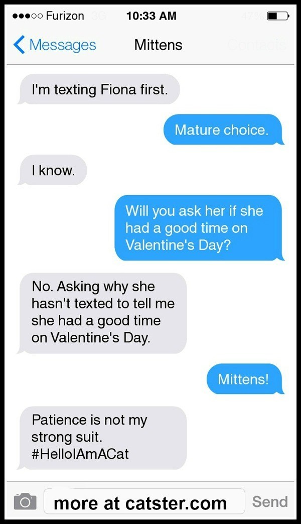 Text - 00000 Furizon 10:33 AM ( Messages Mittens I'm texting Fiona first. Mature choice. I know. Will you ask her if she had a good time on Valentine's Day? No. Asking why she hasn't texted to tell me she had a good time on Valentine's Day. Mittens! Patience is not my strong suit. #HellolAmACat Send more at catster.com