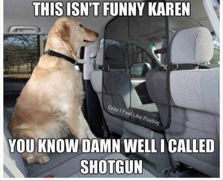 Car seat - THIS ISN'T FUNNY KAREN Crap I Feel Like Posting YOU KNOW DAMN WELL I CALLED SHOTGUN