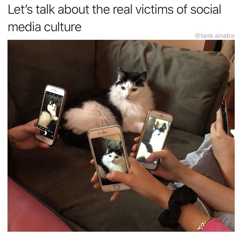 Photo caption - Let's talk about the real victims of social media culture @tank.sinatra