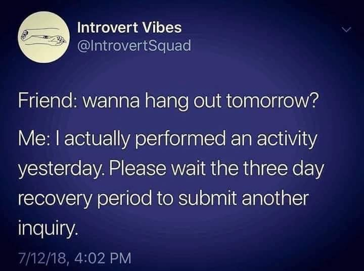 Text - Introvert Vibes @IntrovertSquad Friend: wanna hang out tomorrow? Me: I actually performed an activity yesterday. Please wait the three day recovery period to submit another inquiry. 7/12/18, 4:02 PM