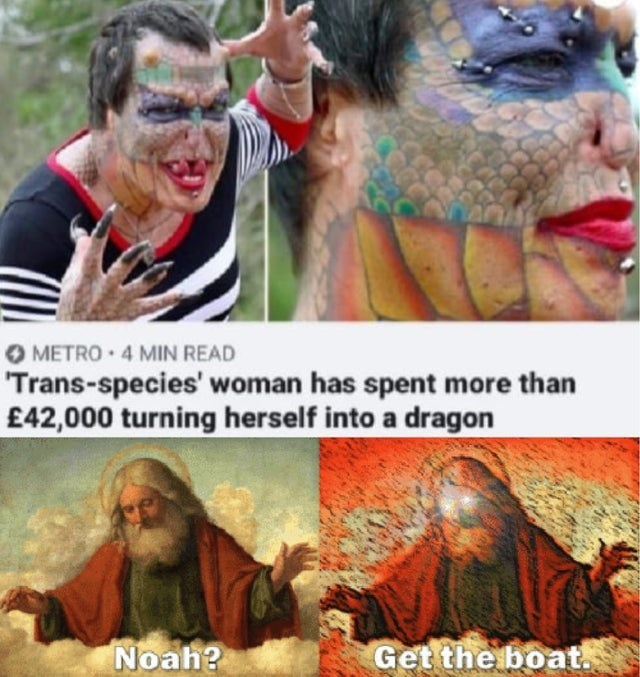 People - O METRO • 4 MIN READ 'Trans-species' woman has spent more than £42,000 turning herself into a dragon Noah? Get the boat.