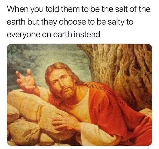 Text - When you told them to be the salt of the earth but they choose to be salty to everyone on earth instead elitcatholicmemesS