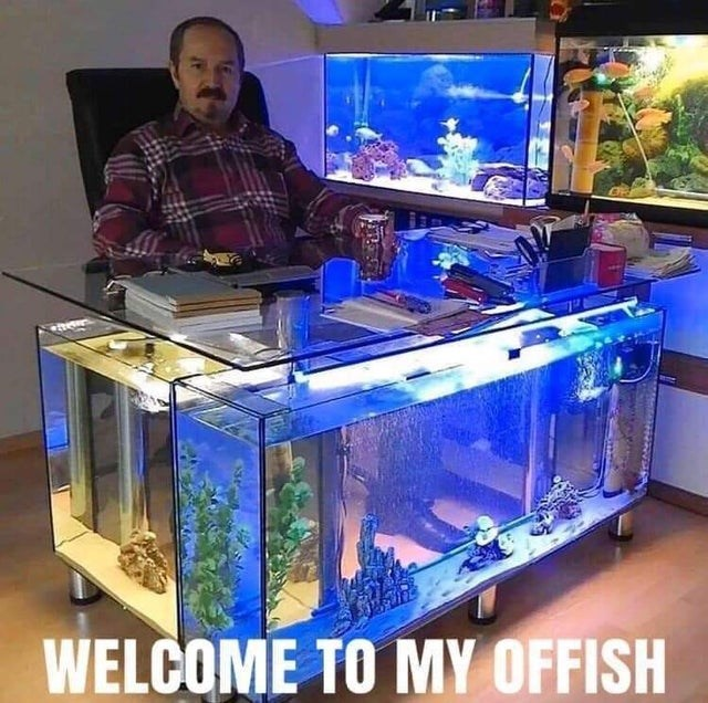 Aquarium - WELCOME TO MY OFFISH