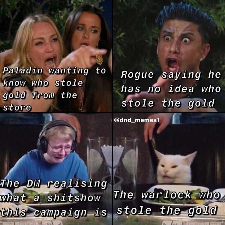 Facial expression - Paladin wanting to know who stole gold from the Rogue saying he has no idea who stole the gold store @dnd_memes1 The DM realising what a shitshow The warlock who this campaign is stole the gold