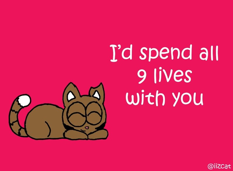 Text - I'd spend all 9 lives with you @iizcat