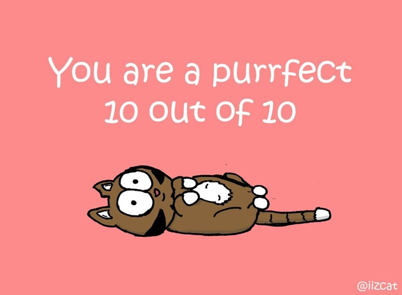 Text - You are a purrfect 10 out of 1O @iizcat
