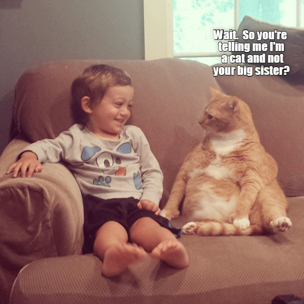 Facial expression - Wait. So you're telling me I'm a cat and not your big sister?