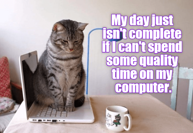 Cat - My day just isn't complete ifI can't spend some quality time on my computer.