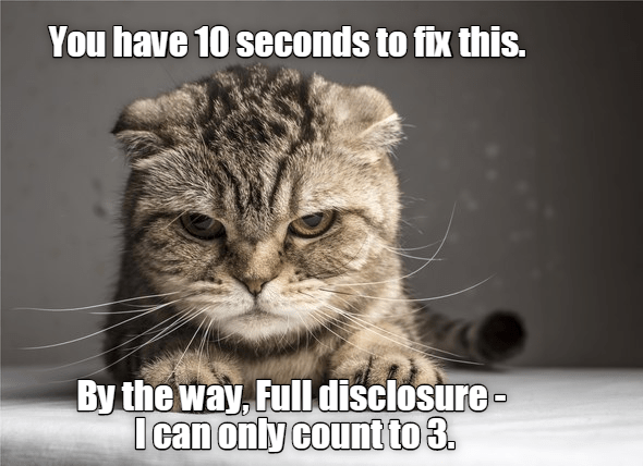 Cat - You have 10 seconds to fix this. By the way, Full disclosure- I can only count to 3.