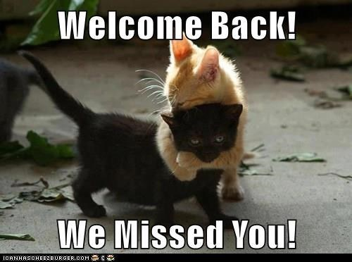 Photo caption - Welcome Back! We Missed You! ICANHASCHEEZBURGER.COM