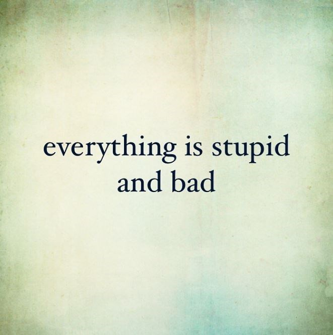 Text - everything is stupid and bad