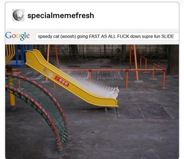 Slope - specialmemefresh Google speedy cat (woosh) going FAST AS ALL FUCK down supre fun SLIDE E999