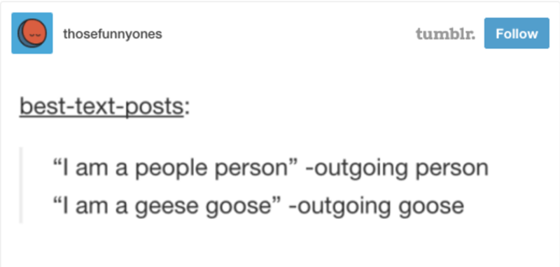 "Text - tumblr. thosefunnyones Follow best-text-posts: ""I am a people person"" -outgoing person ""I am a geese goose"" -outgoing goose"