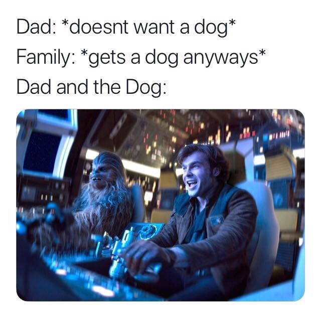Electronics - Dad: *doesnt want a dog* Family: *gets a dog anyways* Dad and the Dog: