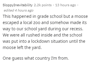 Text - SloppyInevitability 2.2k points · 13 hours ago · edited 4 hours ago This happened in grade school but a moose escaped a local zoo and somehow made its way to our school yard during our recess. We were all rushed inside and the school was put into a lockdown situation until the moose left the yard. One guess what country I'm from.