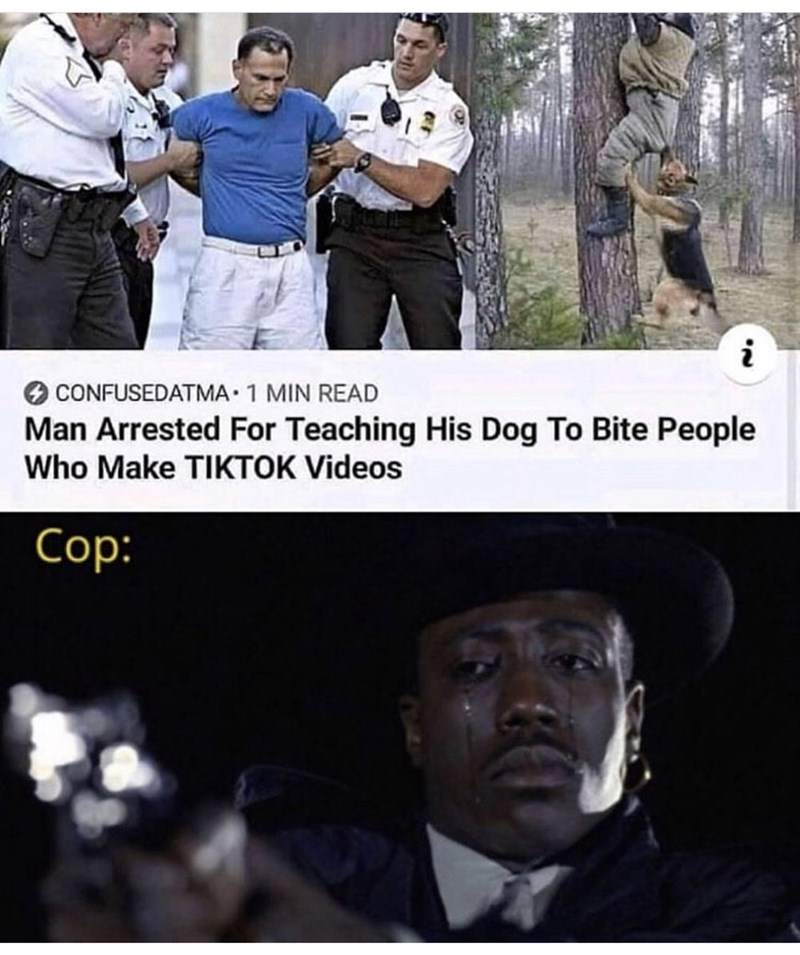Photo caption - CONFUSEDATMA 1 MIN READ Man Arrested For Teaching His Dog To Bite People Who Make TIKTOK Videos Cop: