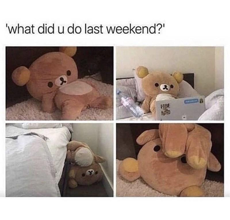 "Stuffed toy - 'what did u do last weekend?"" HVE"