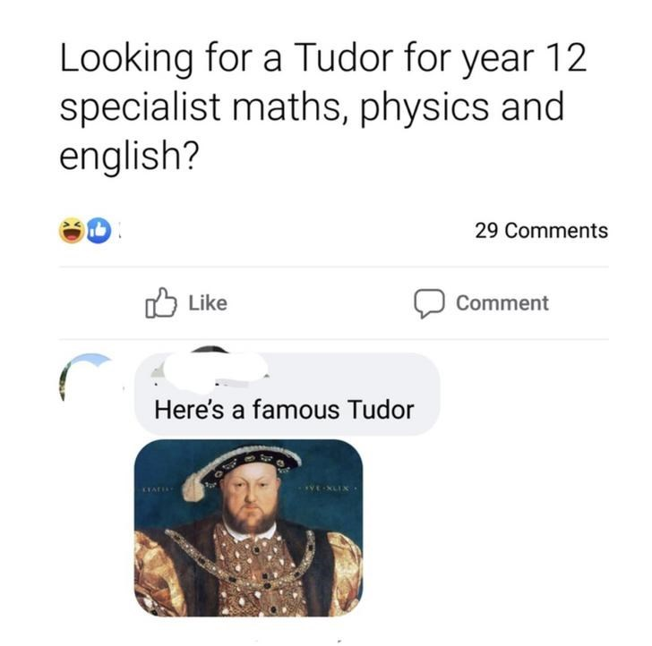 Text - Looking for a Tudor for year 12 specialist maths, physics and english? 29 Comments Like לן Comment Here's a famous Tudor