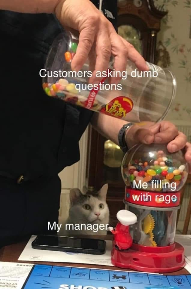 Toy - Customers asking dumb questions Me filling with rage My manager, JOISSI Bell 49 FLAVC