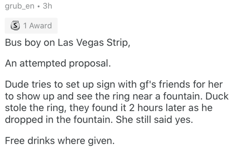 Text - grub_en • 3h 3 1 Award Bus boy on Las Vegas Strip, An attempted proposal. Dude tries to set up sign with gf's friends for her to show up and see the ring near a fountain. Duck stole the ring, they found it 2 hours later as he dropped in the fountain. She still said yes. Free drinks where given.