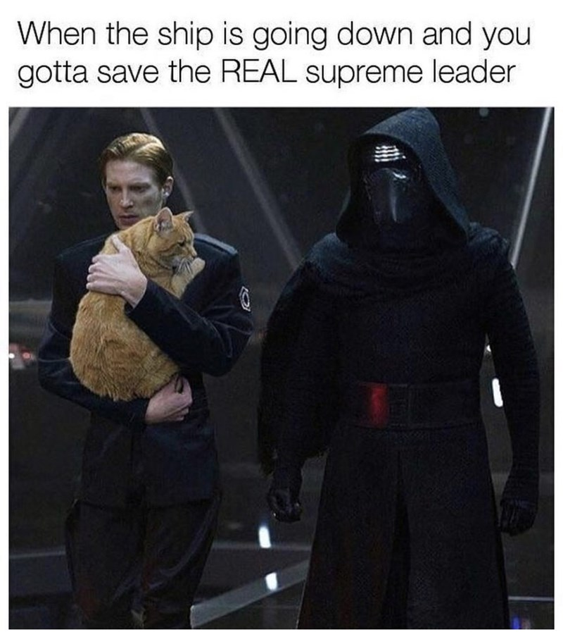 Fictional character - When the ship is going down and you gotta save the REAL supreme leader