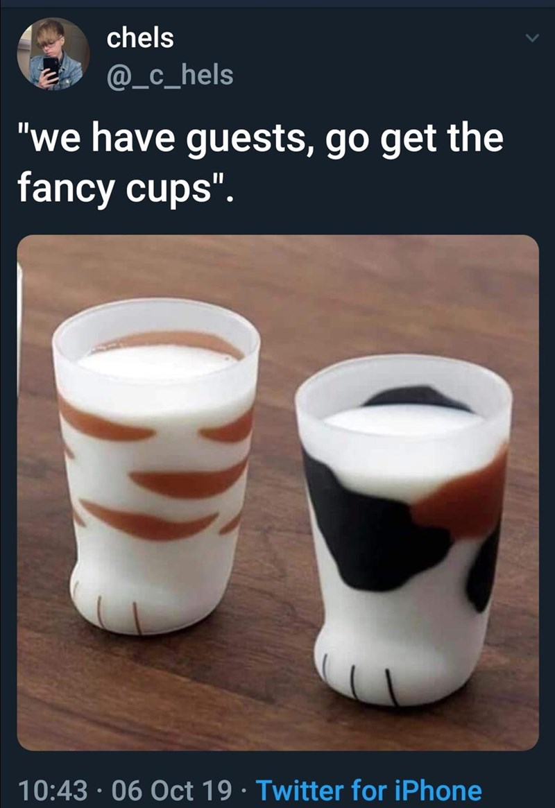 """Cup - chels @_c_hels """"we have guests, go get the fancy cups"""". 10:43 · 06 Oct 19 · Twitter for iPhone"""