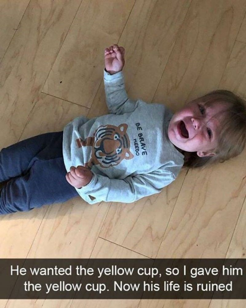 Photo caption - He wanted the yellow cup, so I gave him the yellow cup. Now his life is ruined BE BRAVE KEEDO