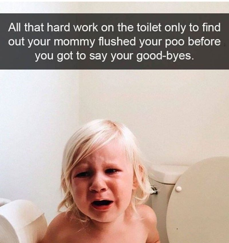 Face - All that hard work on the toilet only to find out your mommy flushed your poo before you got to say your good-byes.
