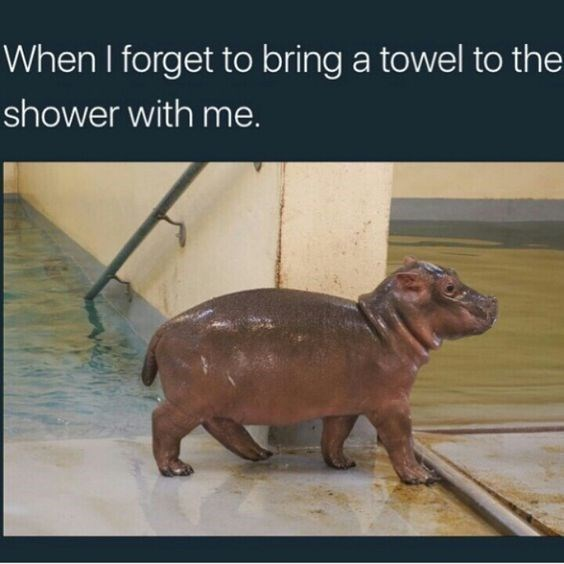 Adaptation - When I forget to bring a towel to the shower with me.