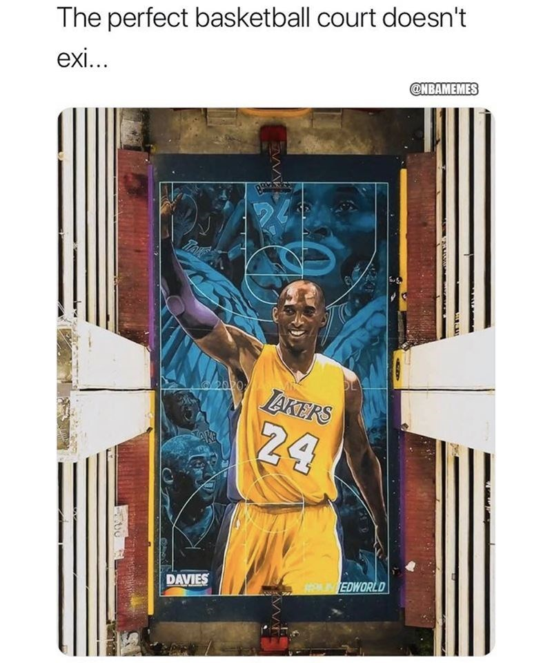 Text - The perfect basketball court doesn't exi... @NBAMEMES TAE 2020 LAKERS 24 LNEDWORLD DAVIES