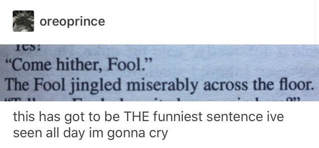 """Text - oreoprince """"Come hither, Fool."""" The Fool jingled miserably across the floor. this has got to be THE funniest sentence ive seen all day im gonna cry"""