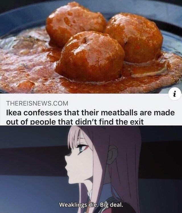Dish - THEREISNEWS.COM Ikea confesses that their meatballs are made out of people that didn't find the exit Weaklings die. Big deal.