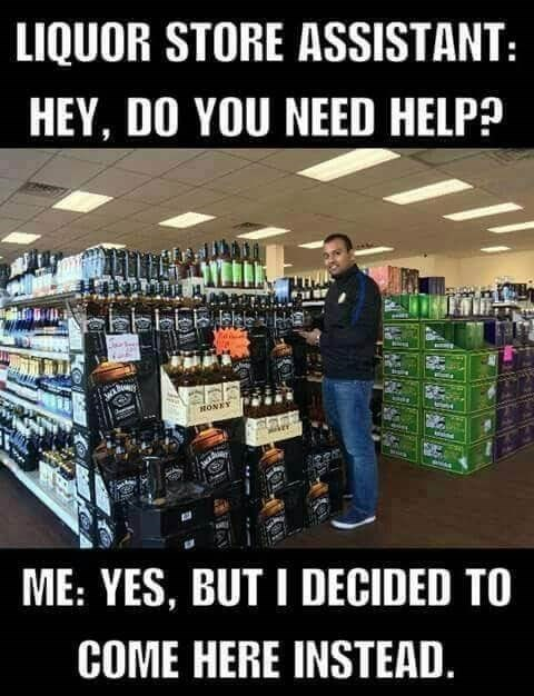 Liquor store - LIQUOR STORE ASSISTANT: HEY, DO YOU NEED HELP? HONEY ME: YES, BUT I DECIDED TO COME HERE INSTEAD.